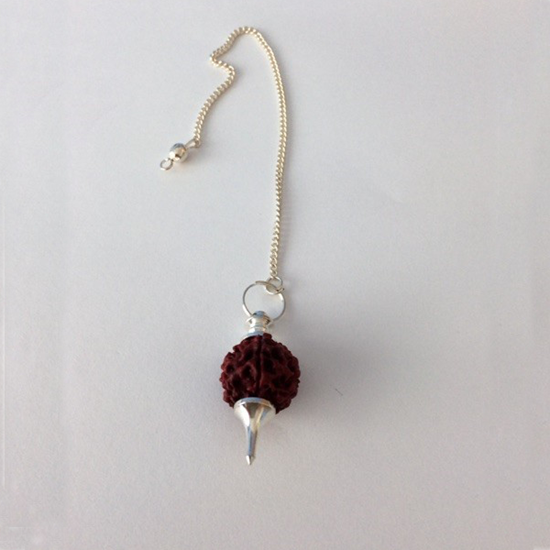 Picture of Rudraksha Bead Pendulum